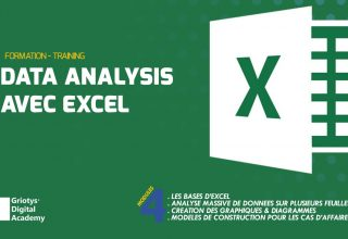 FORMATION DATA ANALYSIS AVEC EXCEL #1