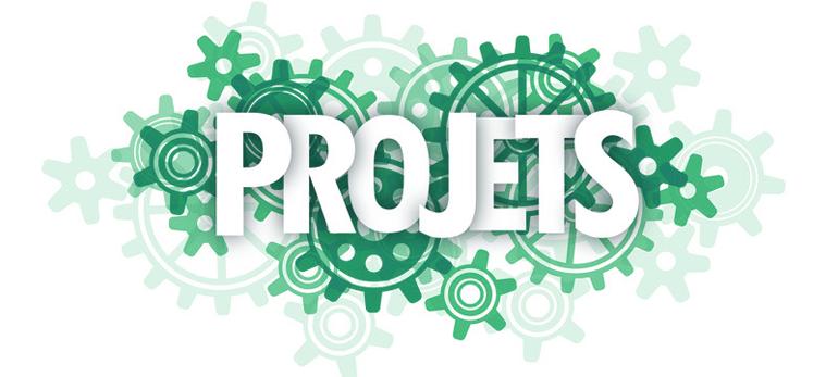 Formation en gestion des projets numeriques